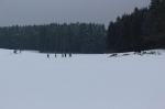 Winterwanderung der Vereine_19