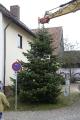 Aufstellen Weihnachtsbaum 2020_2