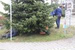 Aufstellen Weihnachtsbaum 2020_3