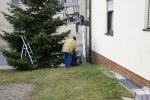 Aufstellen Weihnachtsbaum 2020_8