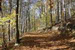Herbst in Plech_1
