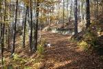 Herbst in Plech_2