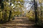 Herbst in Plech_5