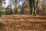 Herbst in Plech_6