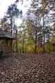 Herbst in Plech_7