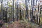 Herbst in Plech und Umgebung